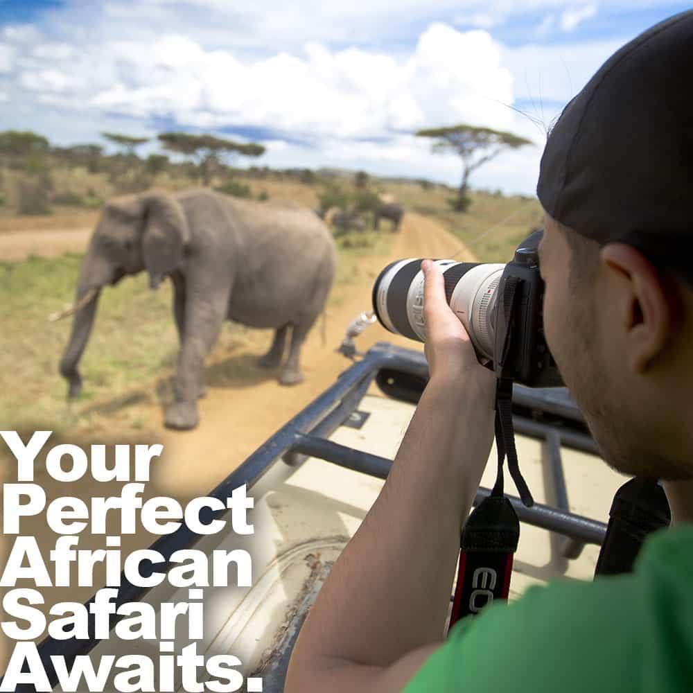 Pamoja Safaris Tanzania